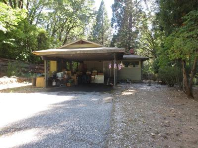 Nevada City Single Family Home For Sale: 347 Brock Road