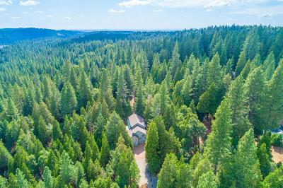 Pollock Pines Single Family Home For Sale: 7347 Lakewood Drive