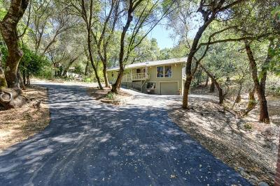 Placerville Single Family Home For Sale: 2605 Andler Road
