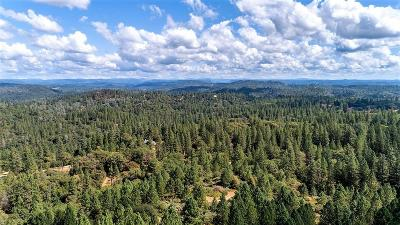 Grass Valley Single Family Home For Sale: 17211 River Ranch Road