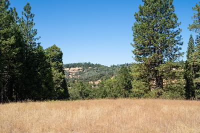 Placerville Residential Lots & Land For Sale: Pleasant Valley