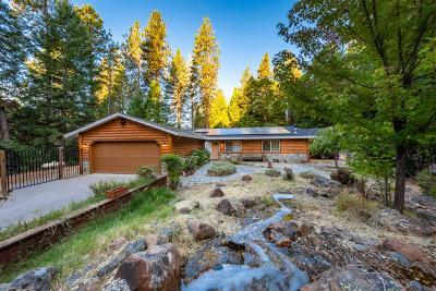 El Dorado County Single Family Home For Sale: 2771 Georgia Slide Road