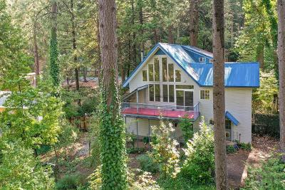 Nevada City Single Family Home For Sale: 13020 Sadie D Drive