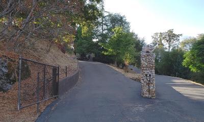 El Dorado County Single Family Home For Sale: 1480 Lotus Road