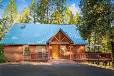 Nevada County Single Family Home For Sale: 13225 Alpha Loop