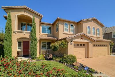 Davis, Woodland Single Family Home For Sale: 33388 Pintail Street