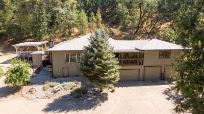 Jackson Single Family Home For Sale: 17040 Climax Road