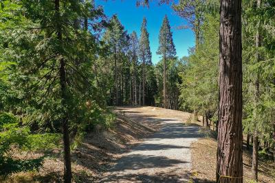 Nevada City Residential Lots & Land For Sale: 14321 Dorcelline Court