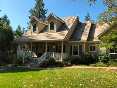 Placer County Single Family Home For Sale: 19611 Eagle Ridge Road