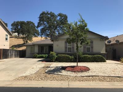 Valley Springs Single Family Home For Sale: 183 Gold King Drive