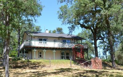 El Dorado County Single Family Home For Sale: 6025 Clark Mountain