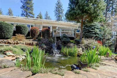 Nevada County Single Family Home For Sale: 10730 Glenbrook Estates Court