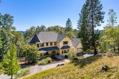 Grass Valley Single Family Home For Sale: 14434 Greenpeace