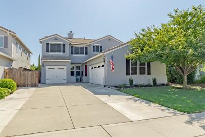 Rocklin Single Family Home For Sale: 6476 Cormorant Circle
