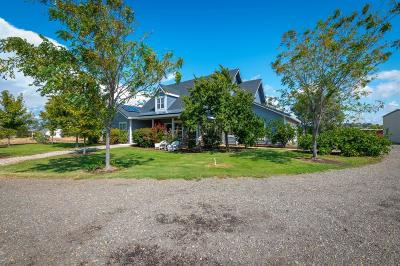 Placer County Single Family Home For Sale: 7350 Andressen Road