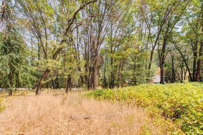 Grass Valley Residential Lots & Land For Sale: 15489 Pammy Way