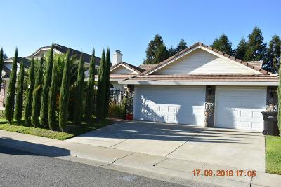 Sacramento Single Family Home For Sale: 8947 Giant Panda Drive