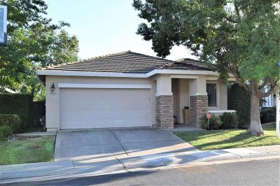 Elk Grove Single Family Home For Sale: 9394 Hambley Circle