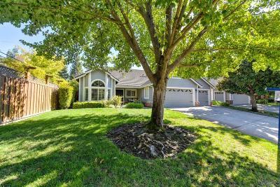 Roseville Single Family Home For Sale: 5030 Tilden Drive