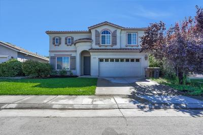Elk Grove Single Family Home For Sale: 10219 Canadeo Circle