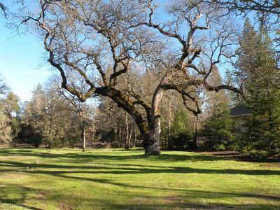 Lake Wildwood, Lake Wildwood (Sub) Residential Lots & Land For Sale: 10123 Valley Oak Court