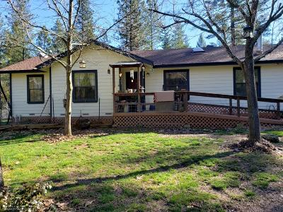 Nevada City Single Family Home For Sale: 17249 Old Mill Road