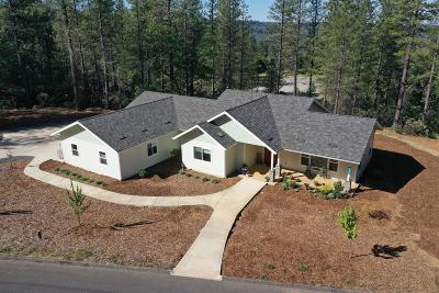 Nevada City Single Family Home For Sale: 10323 Indian Trail