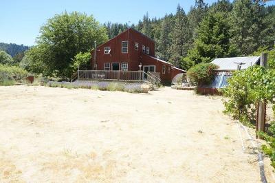 Douglas City Single Family Home For Sale: 500 Reo Lane