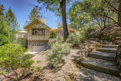 Grass Valley Single Family Home For Sale: 17371 Aileen Way