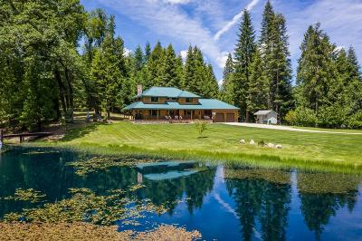 Nevada City Single Family Home For Sale: 15641 Grizzly Ridge Road