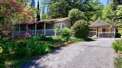 Grass Valley Single Family Home For Sale: 13796 Wheeler Acres Road
