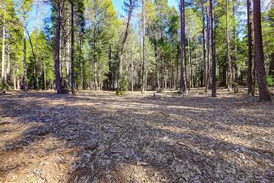Nevada City Residential Lots & Land For Sale: Saint Ledger Forest Road