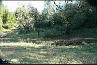 Grass Valley Residential Lots & Land For Sale: 17991 Remle Lane