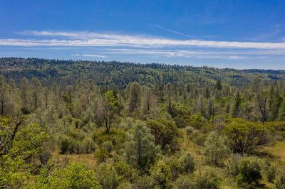 Nevada City Residential Lots & Land For Sale: 16916 Oak Hollow Circle