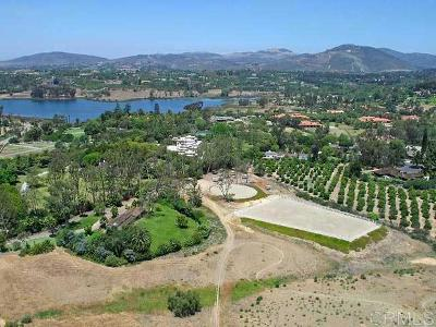 Rancho Santa Fe Residential Lots & Land For Sale: 6710 El Montevideo