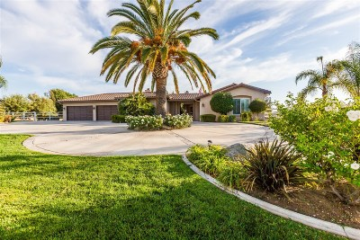 Murrieta, Temecula Single Family Home For Sale: 39415 Calle Anita