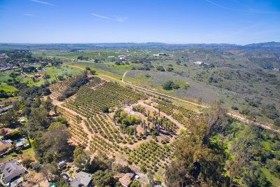 Fallbrook Residential Lots & Land For Sale: 420 W Dougherty #1