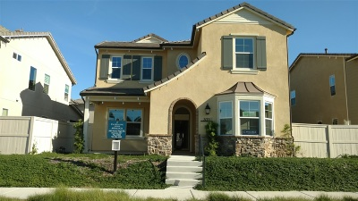 Escondido Single Family Home For Sale: 3011 Starry Night Drive