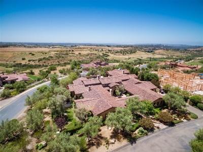 Santaluz Single Family Home For Sale: 8068 Doug Hill