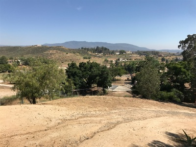 Murrieta, Temecula Residential Lots & Land For Sale: 41620 Via Lilia #1