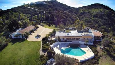 Vista Single Family Home For Sale: 3501 Buena Creek Road