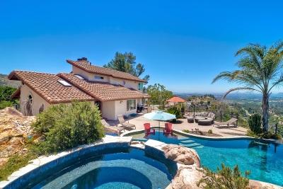 Escondido Single Family Home For Sale: 26452 Sky Drive