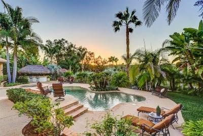 Escondido Single Family Home For Sale: 2981 Wahupa Ranch Road