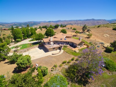 Escondido Single Family Home For Sale: 15438 Sky High Rd.