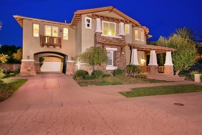 Encinitas Single Family Home For Sale: 1310 Ravean