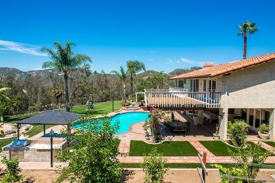 Escondido Single Family Home For Sale: 2460 Vista Lago Terrace