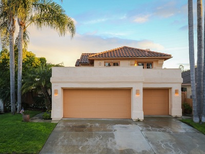 Carlsbad Single Family Home For Sale: 2919 Via Pepita