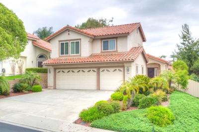 Vista Single Family Home For Sale: 1503 Madrid Dr