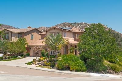 Santee Single Family Home For Sale: 10801 Dakota Ranch Rd