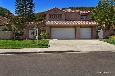 San Marcos Single Family Home For Sale: 353 Glendale Ave.